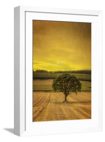 Schwartz - Lone Tree at Sunset-Don Schwartz-Framed Art Print