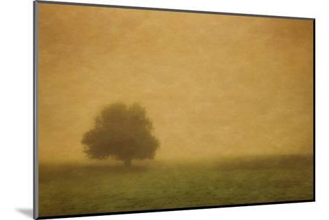 Schwartz - Silent and Still-Don Schwartz-Mounted Art Print