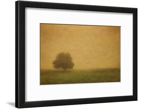 Schwartz - Silent and Still-Don Schwartz-Framed Art Print