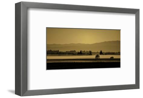 Schwartz - Soft Blanket of Fog-Don Schwartz-Framed Art Print