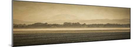 Schwartz - Sauvie Island Serenity-Don Schwartz-Mounted Premium Giclee Print