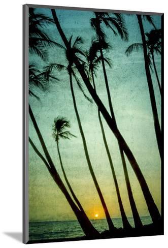 Schwartz - Tilting Palms-Don Schwartz-Mounted Art Print