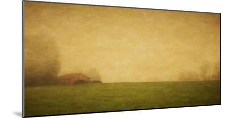 Schwartz - Red Barn in the Fog-Don Schwartz-Mounted Art Print