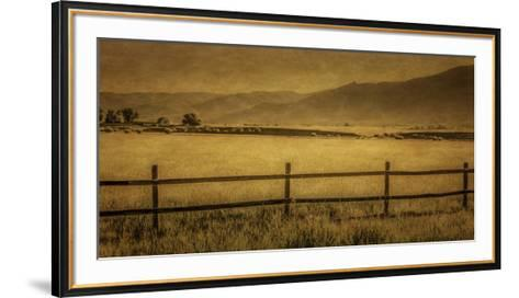 Schwartz - Yampa Valley Morning-Don Schwartz-Framed Art Print