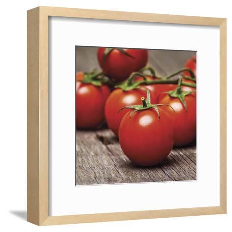 Kitchen Spice 4--Framed Art Print