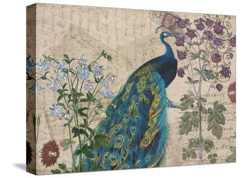 Peacock Botanical 3-Elizabeth Jordan-Stretched Canvas Print