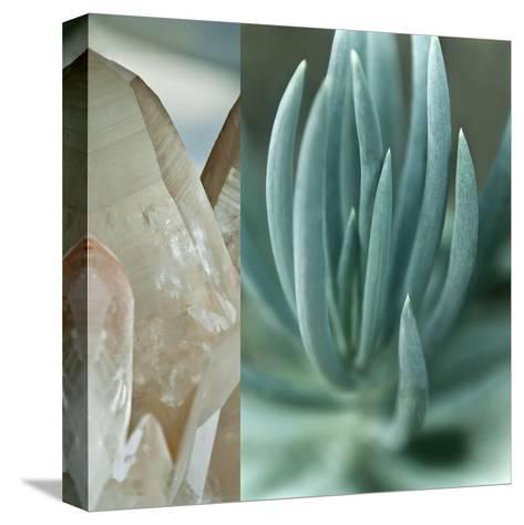 Desert Jewels I-Sidney Aver-Stretched Canvas Print