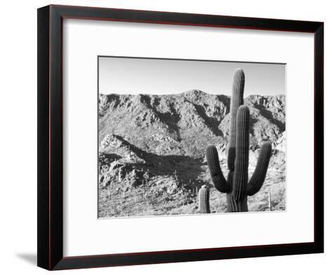 Gates Pass Bw-Murray Bolesta-Framed Art Print