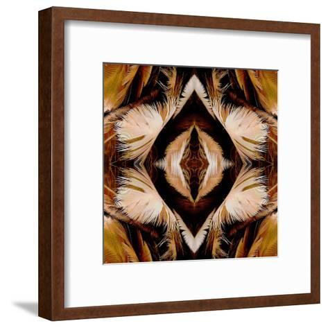 Brown Feathers X2-Rose Anne Colavito-Framed Art Print