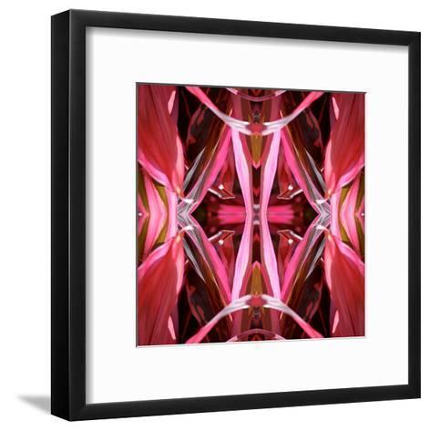 Red Blanket 2X-Rose Anne Colavito-Framed Art Print