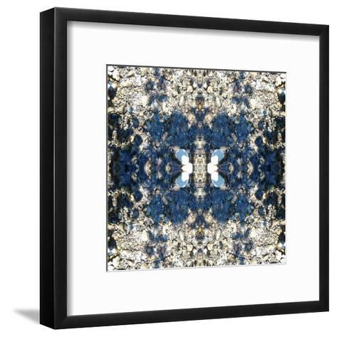 River Rock4a-Rose Anne Colavito-Framed Art Print