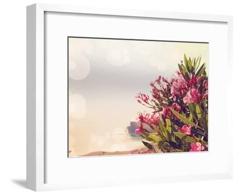 Flowers in Paradise II-Sylvia Coomes-Framed Art Print