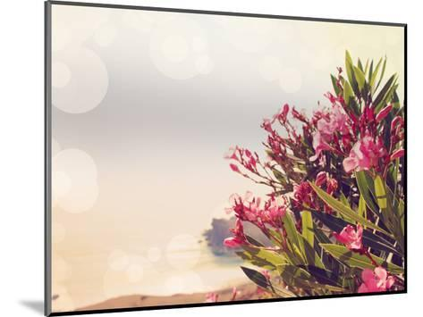 Flowers in Paradise II-Sylvia Coomes-Mounted Art Print