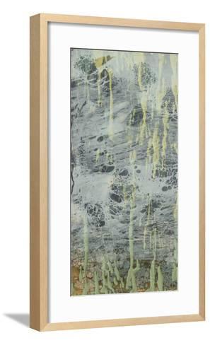 Marbled Plane I-Jennifer Goldberger-Framed Art Print