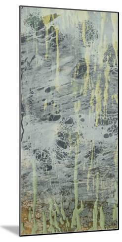 Marbled Plane I-Jennifer Goldberger-Mounted Giclee Print