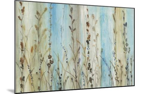 Ombre Floral II-Tim OToole-Mounted Limited Edition