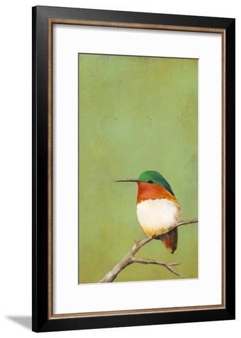 Perch III-Mehmet Altug-Framed Art Print