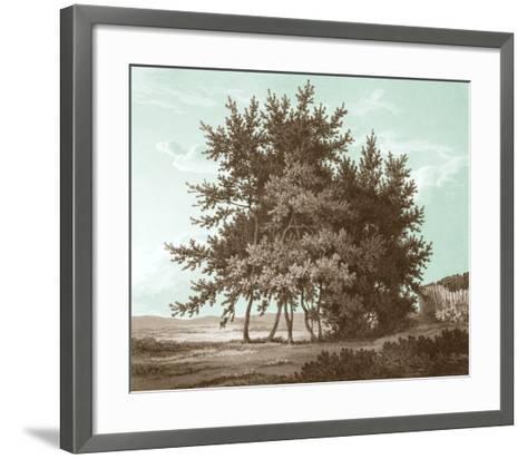 Serene Trees IV-Edward Kennion-Framed Art Print