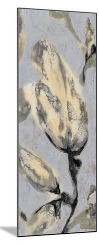 Flower Bud Triptych III-Jennifer Goldberger-Mounted Giclee Print