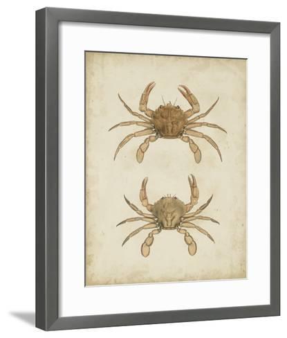 Crustaceans VI-James Sowerby-Framed Art Print