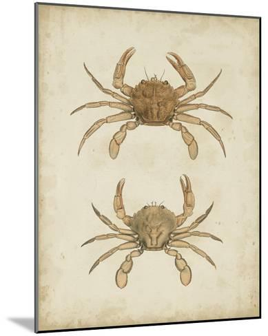 Crustaceans VI-James Sowerby-Mounted Giclee Print