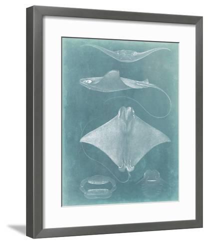 Morning Swim II-Vision Studio-Framed Art Print