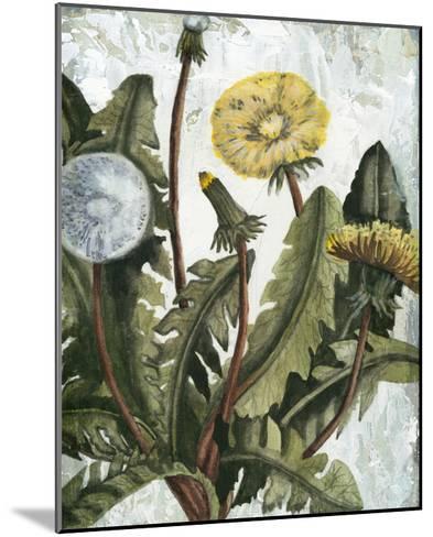 Dandelion Patina I-Naomi McCavitt-Mounted Giclee Print