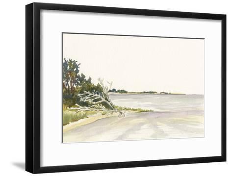 Solitary Coastline II-Dianne Miller-Framed Art Print