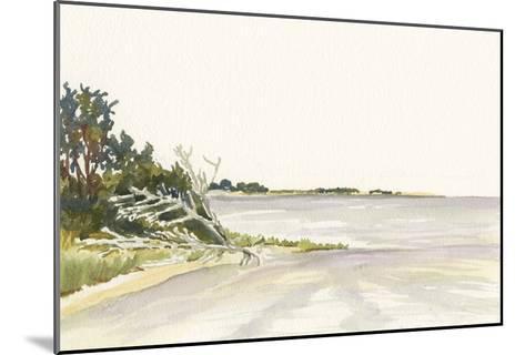 Solitary Coastline II-Dianne Miller-Mounted Art Print