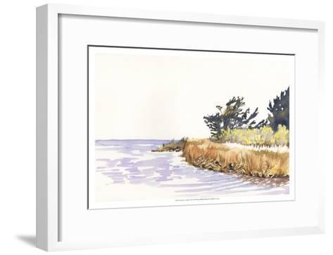 Solitary Coastline III-Dianne Miller-Framed Art Print