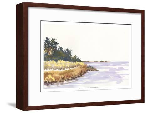 Solitary Coastline IV-Dianne Miller-Framed Art Print