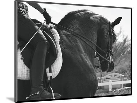 His Name is Wraaven-Barry Hart-Mounted Art Print
