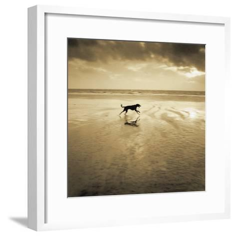 Dog on the Beach, West Wittering-Jo Crowther-Framed Art Print