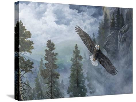 Soaring High II-B^ Lynnsy-Stretched Canvas Print