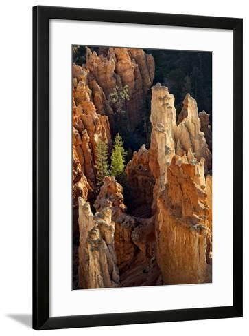 Two Pines-Danny Head-Framed Art Print