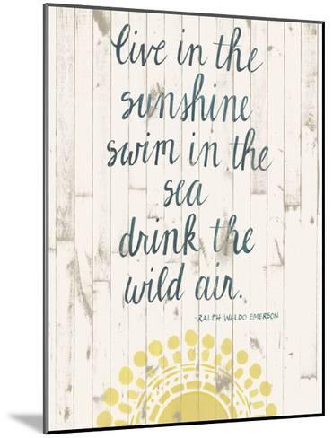 Sun Quote IV-Grace Popp-Mounted Art Print