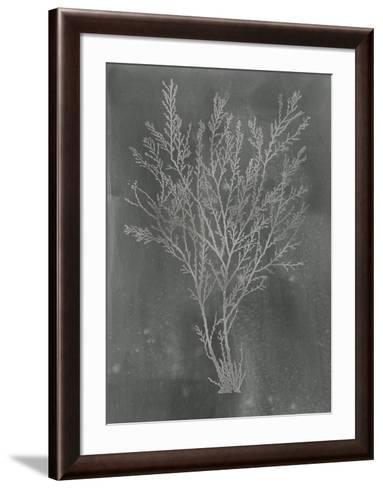 Silver Foil Algae I on Black-Jennifer Goldberger-Framed Art Print