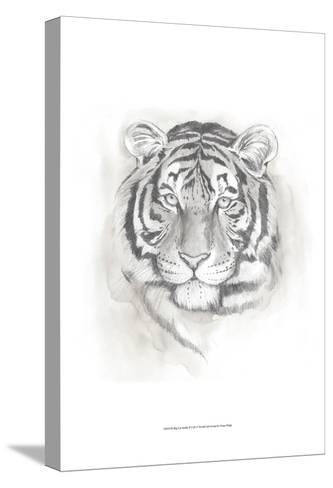 Big Cat Study II-Grace Popp-Stretched Canvas Print