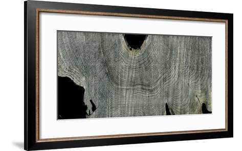 Gray Ghost II-John Butler-Framed Art Print