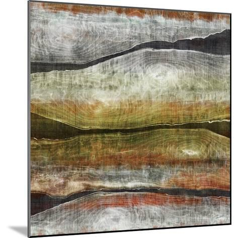 Painted Live Edge I-John Butler-Mounted Art Print