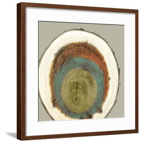 Colored Rings II-Studio W-Framed Art Print