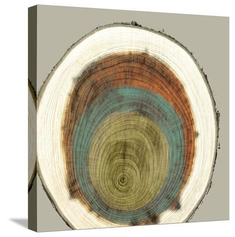 Colored Rings II-Studio W-Stretched Canvas Print