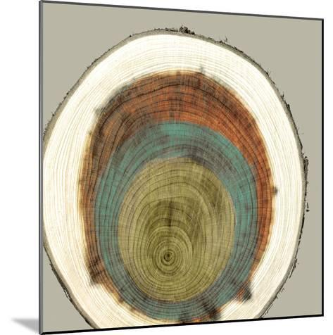 Colored Rings II-Studio W-Mounted Art Print