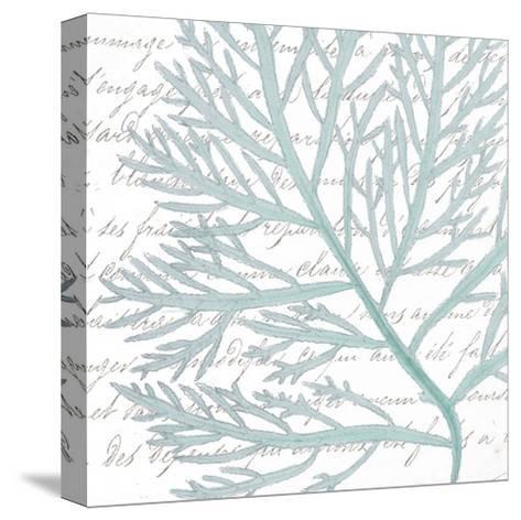 Aqua Marine VI-Anna Hambly-Stretched Canvas Print