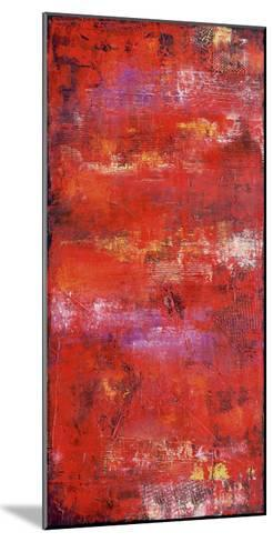 Red Door II-Erin Ashley-Mounted Art Print