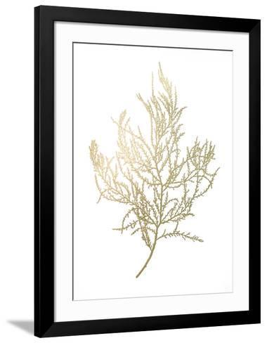 Gold Foil Algae III-Jennifer Goldberger-Framed Art Print