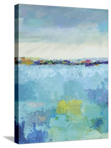 Mirror-Paul Duncan-Stretched Canvas Print
