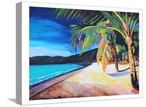 Magens Bay St Thomas Usvi-M Bleichner-Stretched Canvas Print
