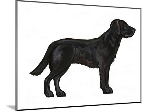 Black Lab-Sally Pattrick-Mounted Art Print