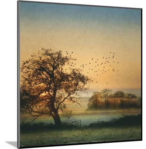 Good By Day Birds-William Vanscoy-Mounted Art Print